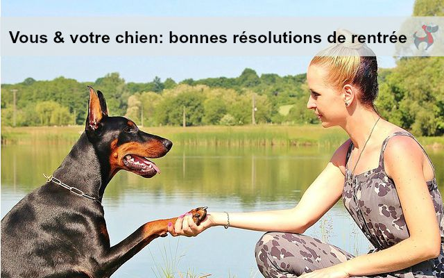s_BonnesResolutionsRentreeChien