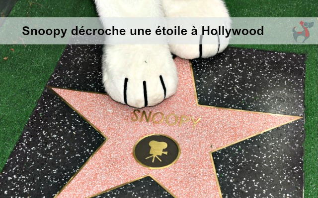 s_snoopy walk of fame