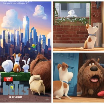 Comme des bêtes ou The Secret Life of Pets