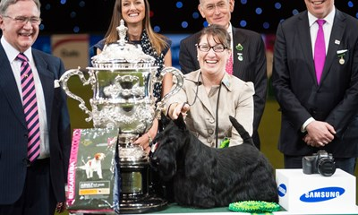 best-in-show-2015-knopa-the-scottish-terrier-and-handler-rebecca-cross-Crufts