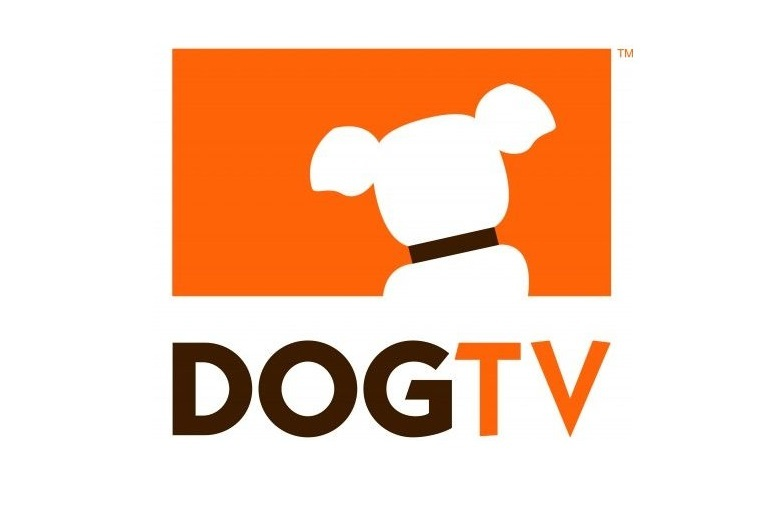Dog TV en France