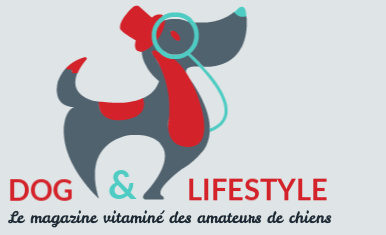 DOG & LIFESTYLE