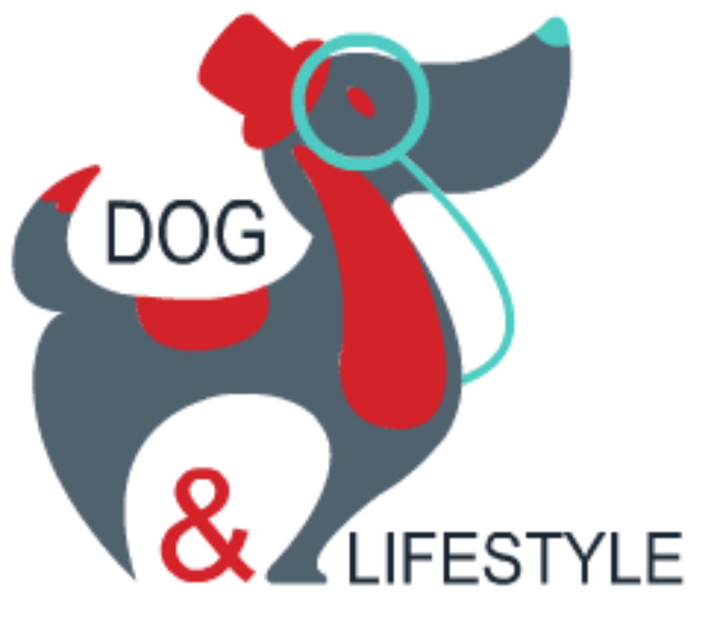 dog &lifestyle le magazine vitaminé des amateurs de chiens